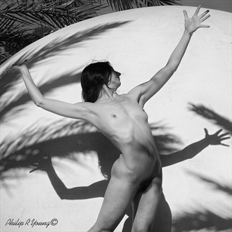 Palm Shadows Nude Artistic Nude Photo by Photographer Philip Young
