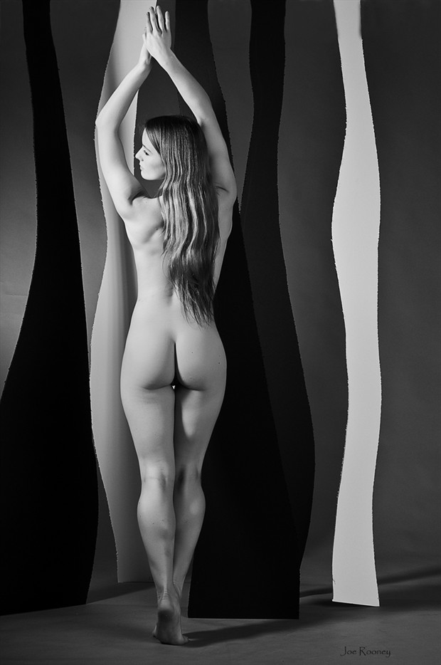 Paper Forest Artistic Nude Photo by Model MaryCeleste