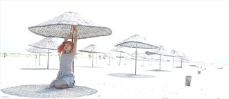 Parasols Nature Photo by Photographer Roelf Rozema Fotocol