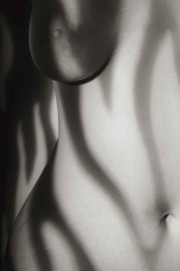 Photo Study of Partial Torso in Patterned Light Artistic Nude Photo by Photographer Mark Bigelow