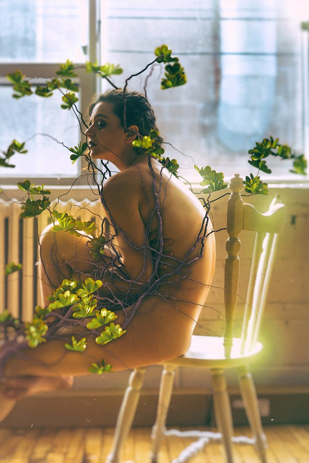 Photosynthesis 1 Artistic Nude Photo by Photographer Stef D