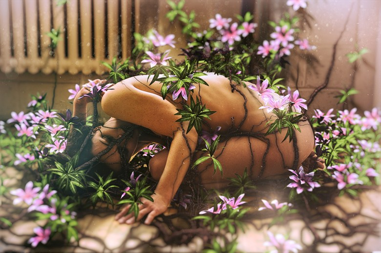 Photosynthesis 2 Artistic Nude Photo by Photographer Stef D