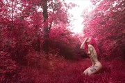 Pink wood Artistic Nude Photo by Model Miele Rancido