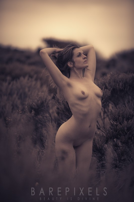 Favorites, Nude Art Photography Curated By Model -8088