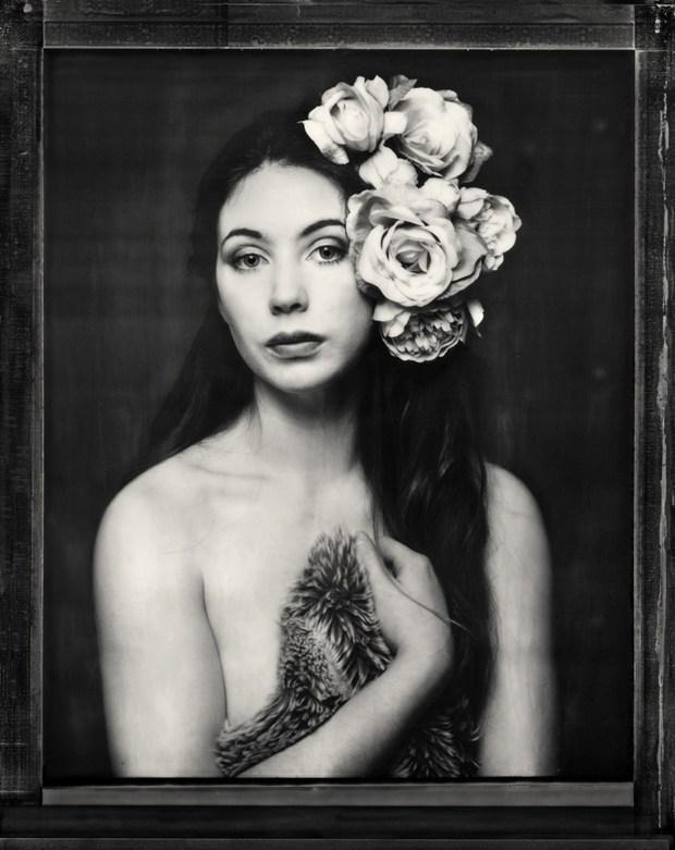 Polaroid of Elle Artistic Nude Photo by Photographer RayRapkerg