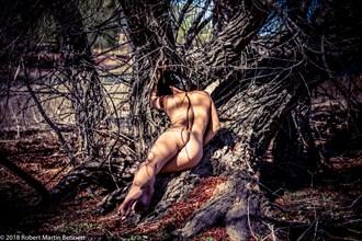 Prescott Artistic Nude Photo by Model April A McKay