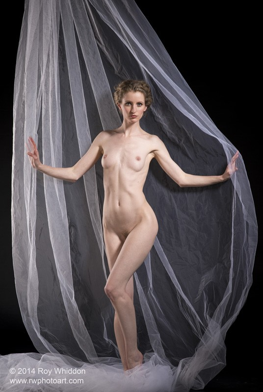 Presentation Artistic Nude Photo by Photographer Roy Whiddon