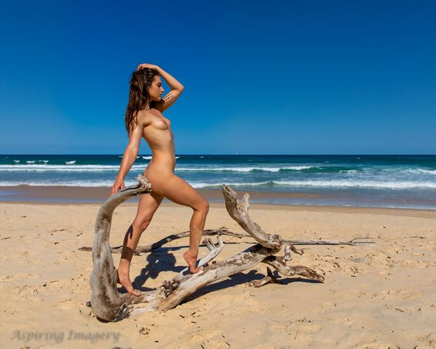 Pride and Joy Artistic Nude Photo by Photographer Aspiring Imagery