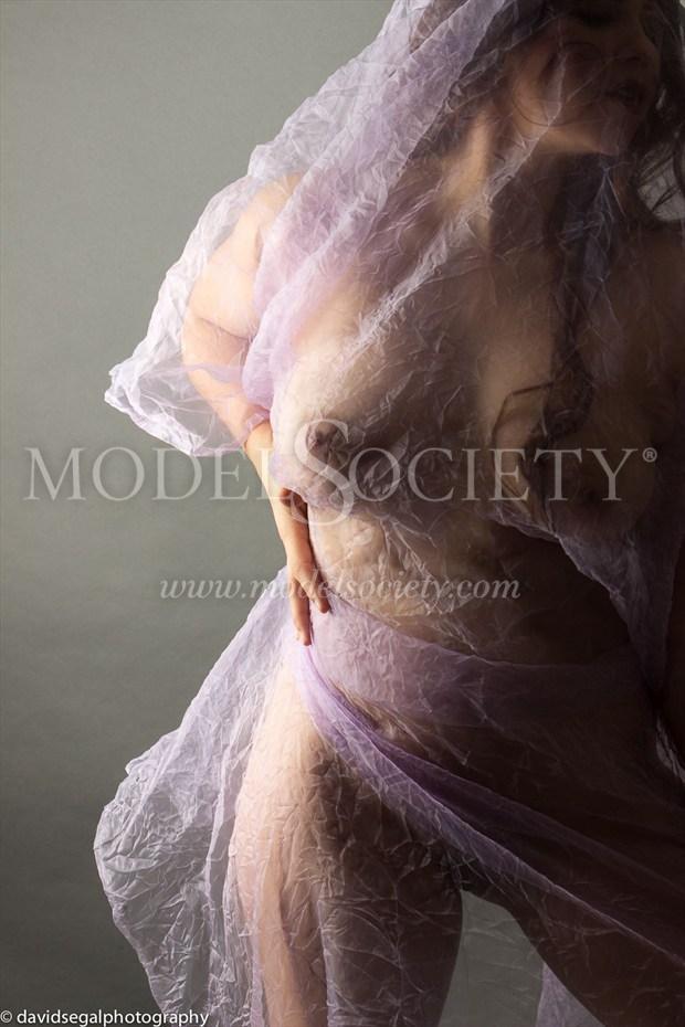 Purple Days Artistic Nude Photo by Model Charlotte Dell'Acqua
