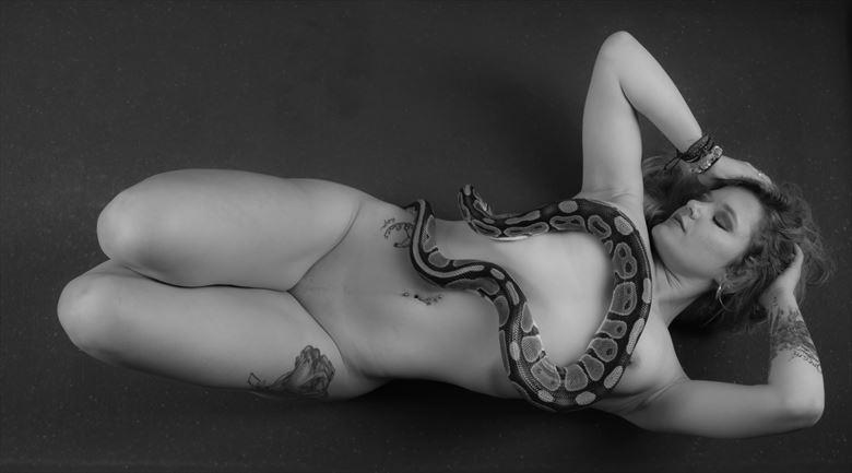 Python V Artistic Nude Photo by Photographer Allan Taylor