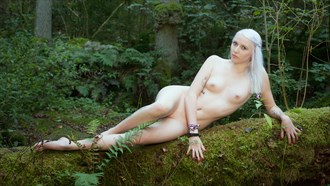 Q2 Artistic Nude Photo by Photographer Andy Fiechtner
