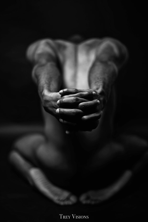 17 Artistic Nude Photo by Photographer Trey Visions