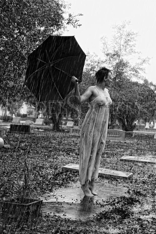 Rainy Daze Nature Photo by Photographer Sid Graves
