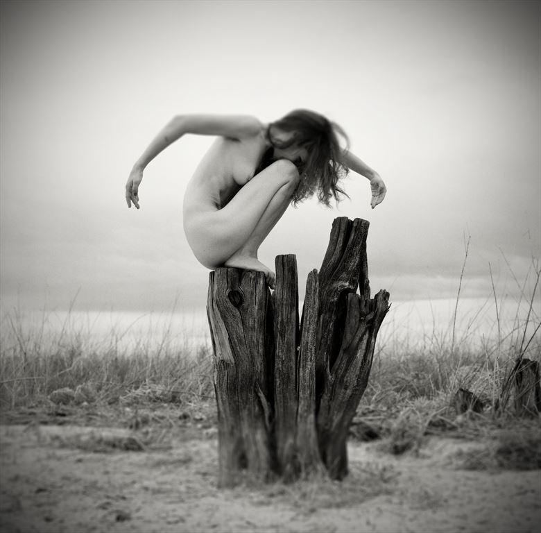 Raven Artistic Nude Artwork by Photographer Christopher Ryan
