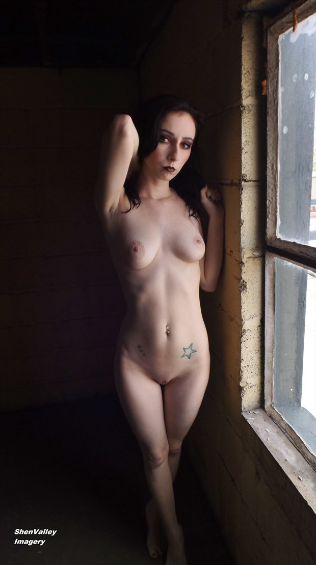 Raven Artistic Nude Photo by Photographer ShenValley Imagery