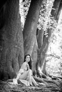 Rebecca Forest 1 Nature Photo by Photographer Daniel Hubbert