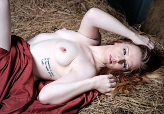 Reclined 2 Artistic Nude Photo by Photographer AL Coburn