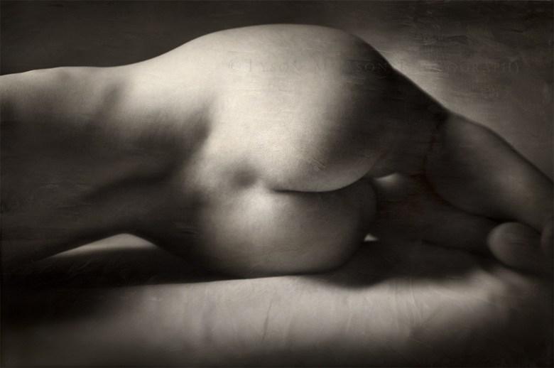 Recumbent Form Artistic Nude Photo by Photographer Tmon13