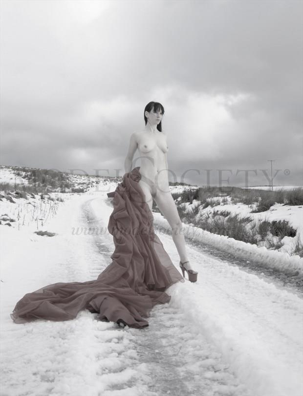 Red dress in snow Artistic Nude Photo by Photographer Light is Art