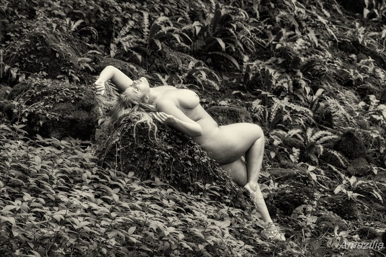 Resting Amongst the Ferns Artistic Nude Photo by Photographer Amazilia Photography