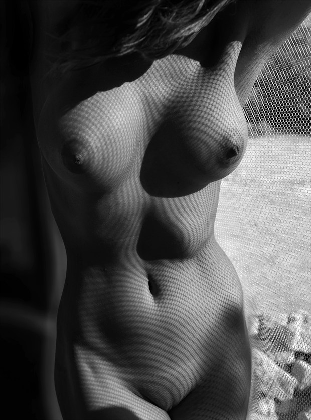 Rhythm Mesh Artistic Nude Photo by Photographer Miguel Soler Roig