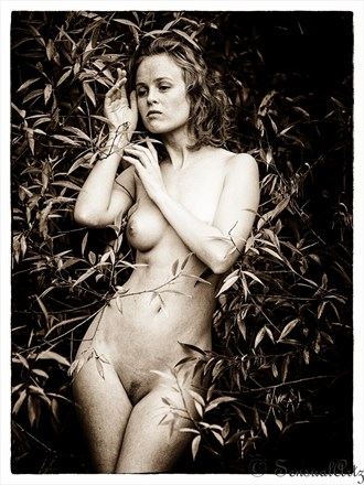 Romahni Artistic Nude Photo by Photographer Sensual Artz