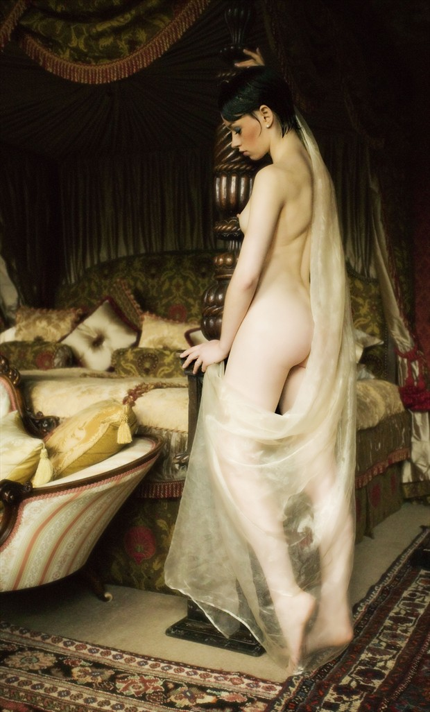 Romancing the Light Artistic Nude Photo by Photographer MaxOperandi