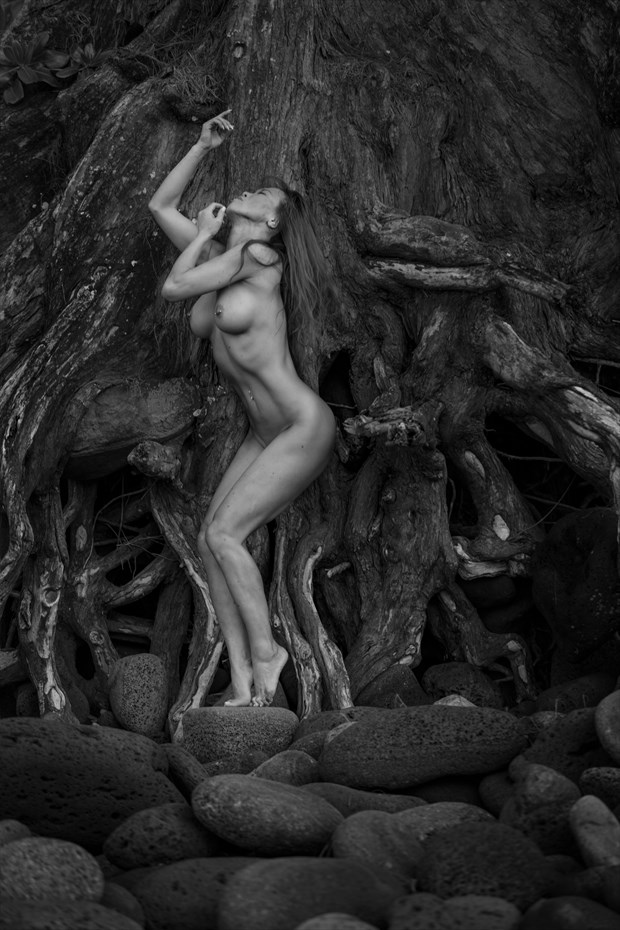 Root of a lady Artistic Nude Photo by Photographer MarcBoilyPhotography
