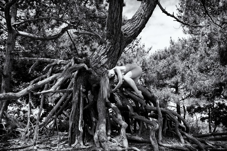 Roots%234 Artistic Nude Photo by Photographer BenErnst