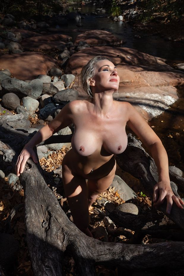 Roots Artistic Nude Photo by Photographer Dream Digital Photog