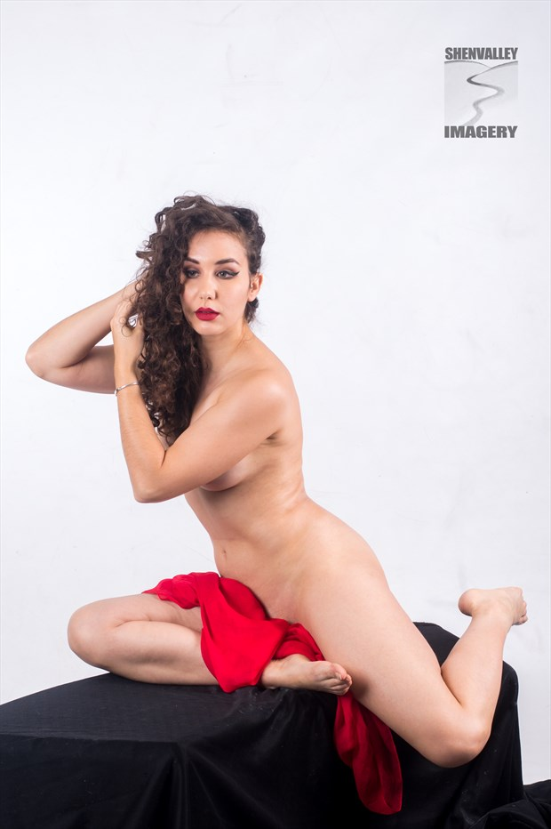 RoseDC Artistic Nude Photo by Photographer ShenValley Imagery