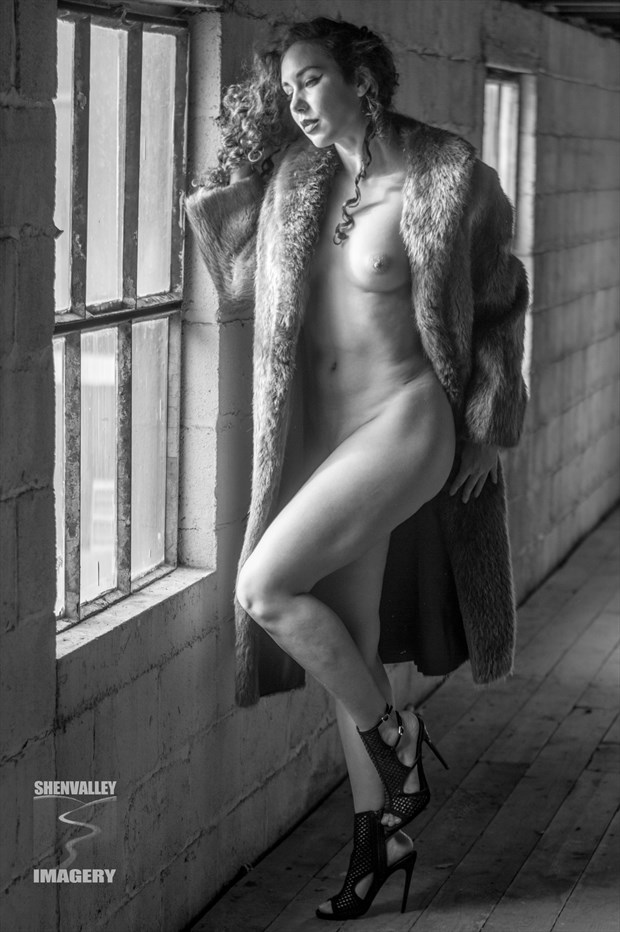 RoseDC in B&W Artistic Nude Photo by Photographer ShenValley Imagery