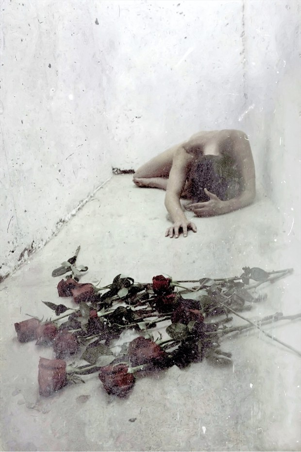 Roses Artistic Nude Photo by Photographer Jeff Levine