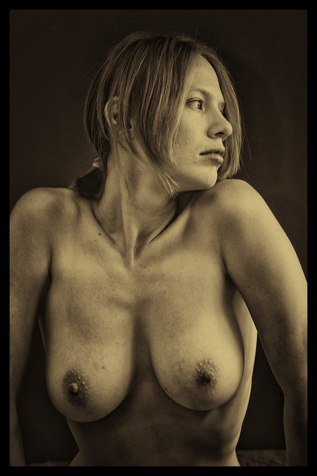 Rosie Artistic Nude Photo by Photographer pblieden