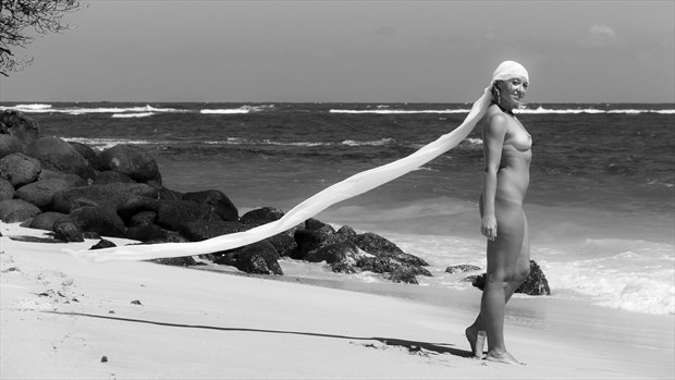 Royalty Artistic Nude Photo by Photographer Opp_Photog