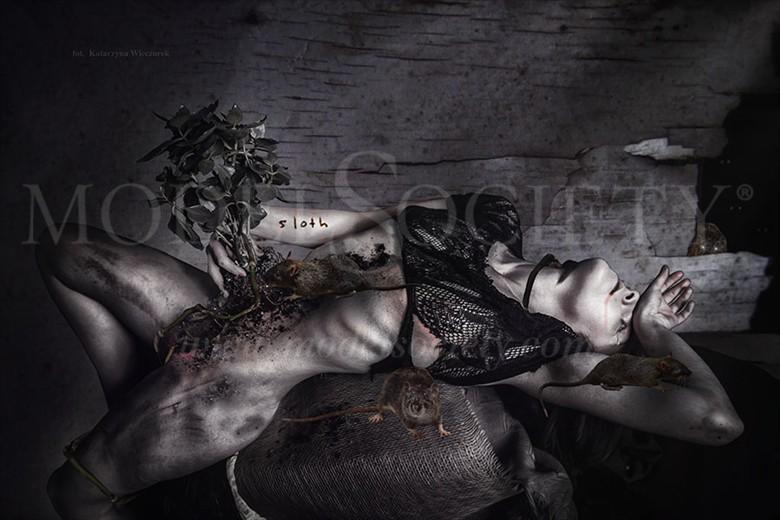 SLOTH II Photo Manipulation Artwork by Photographer Katarzyna Wieczorek