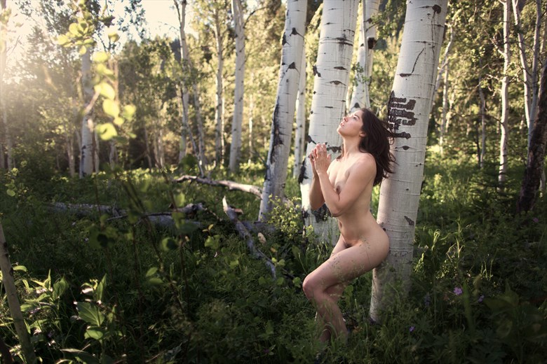 Sacred Grove (Quaking Aspens) Artistic Nude Photo by Photographer Staunton Photo