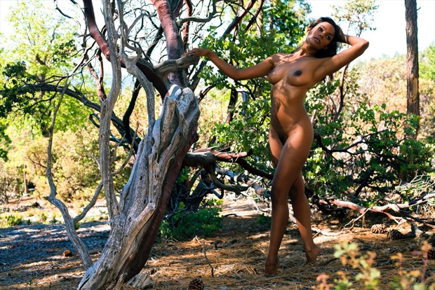 Sainte's Promenade Artistic Nude Photo by Photographer Muse Evolution Photography