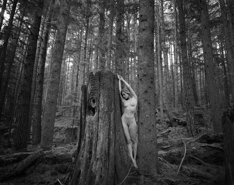 Sappling Artistic Nude Photo by Photographer Ron Skei (RonChez)