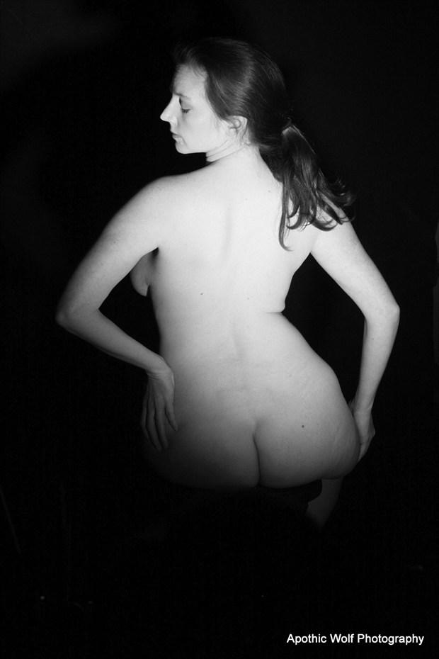 Sarah Lynn Artistic Nude Artwork by Photographer A W Photography