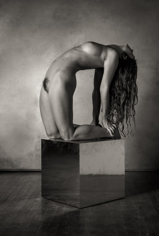 Sculpted Nude Artistic Nude Photo by Photographer Risen Phoenix