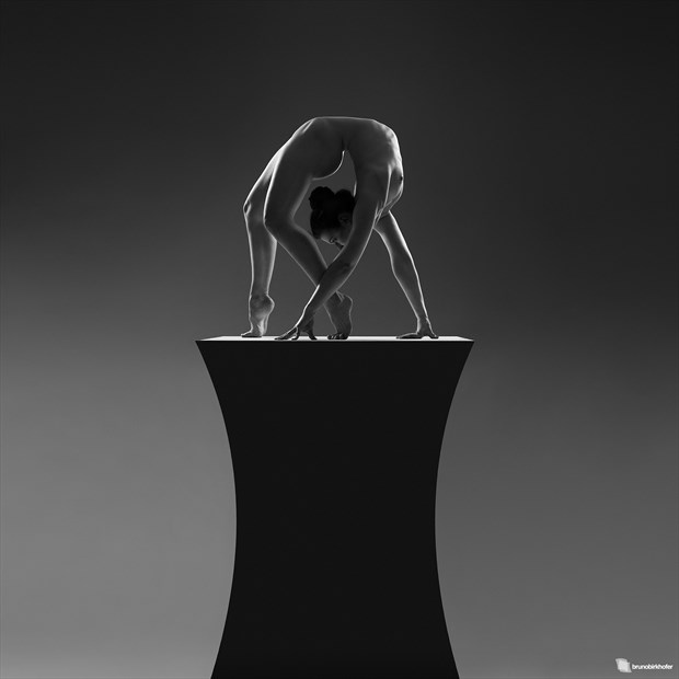 Sculpture Artistic Nude Photo by Photographer Bruno Birkhofer