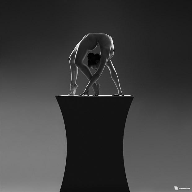 Sculpture Artistic Nude Photo by Photographer Bruno Birkhofer