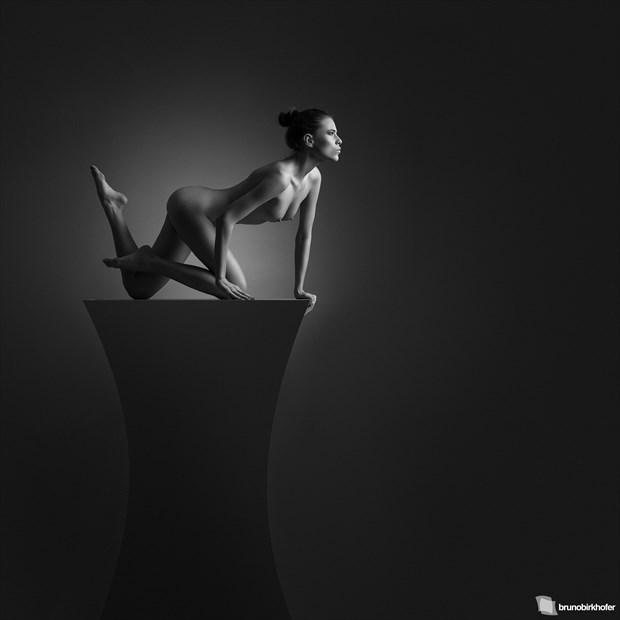 Sculpture I Artistic Nude Photo by Photographer Bruno Birkhofer