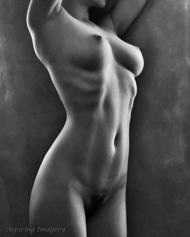 Sculpturesque No. 2 Artistic Nude Photo by Photographer Aspiring Imagery