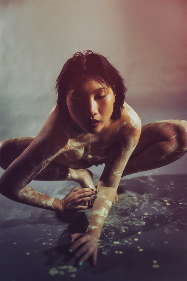 Seeking Artistic Nude Photo by Photographer Stef D