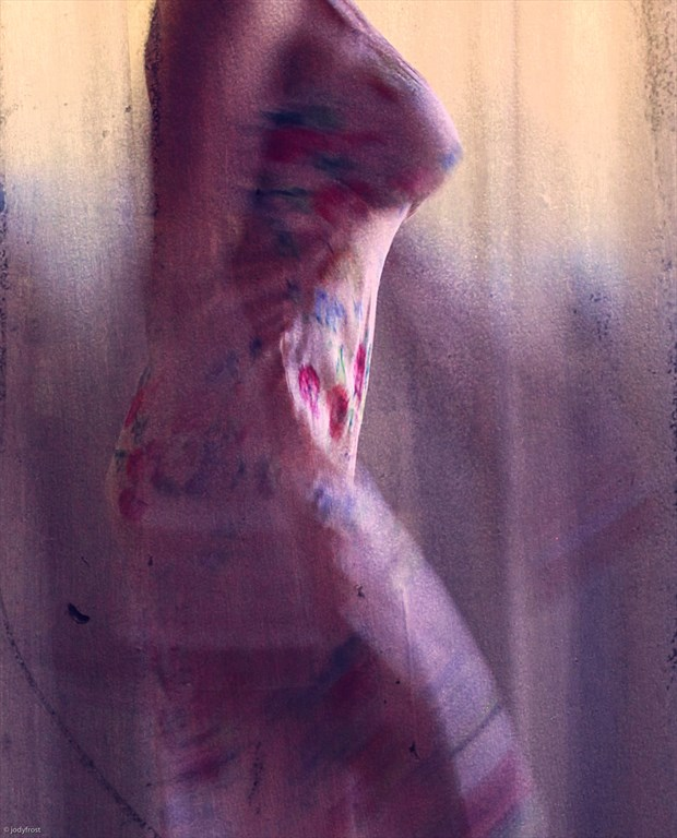 Selfie in vintage slip Lingerie Photo by Photographer jody frost