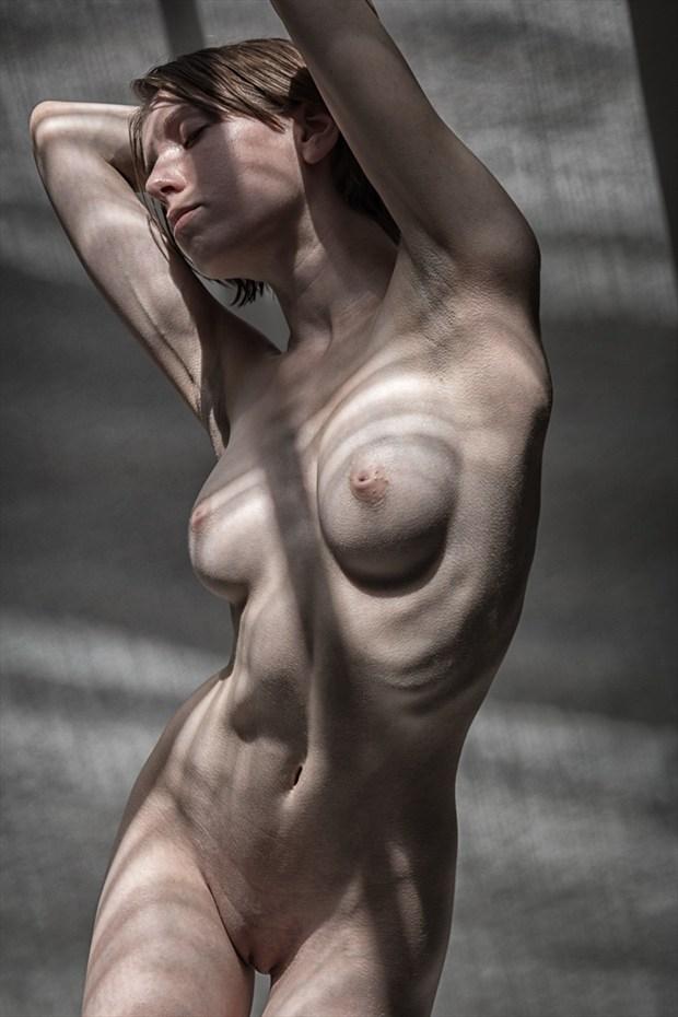 Shadows   Poly Artistic Nude Photo by Photographer rick jolson