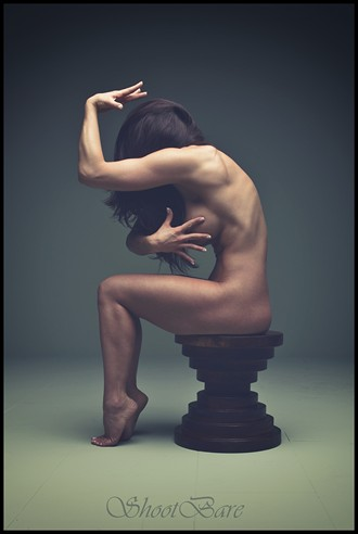 Shaped with curves Artistic Nude Artwork by Model Ceara Blu