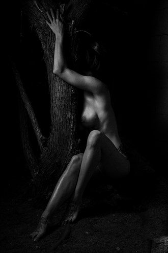 Shauna Artistic Nude Photo by Photographer luisaguirre